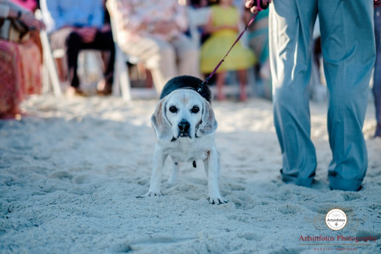 St George Island wedding blog 037