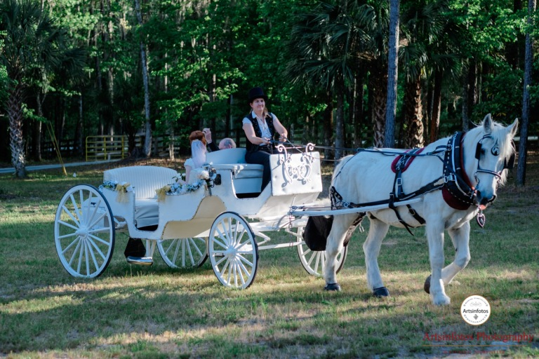 Micanopy wedding photography 309