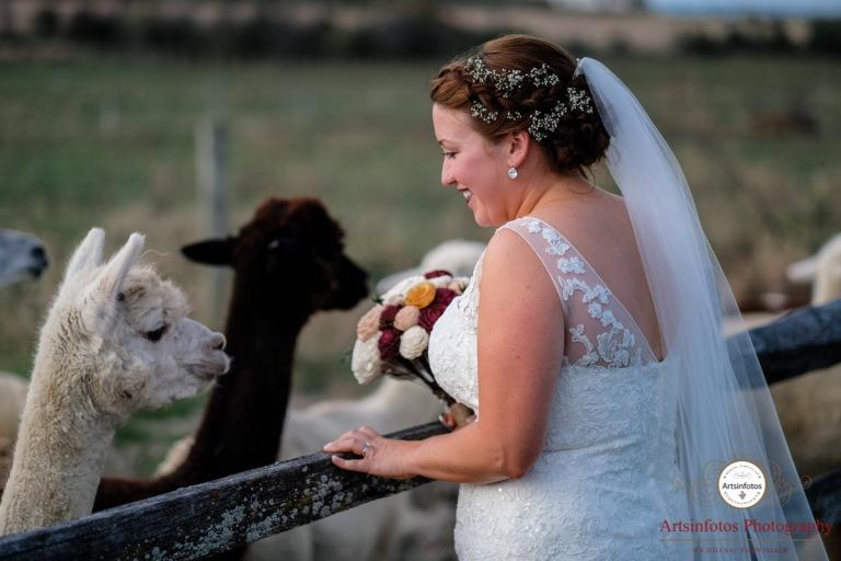 Vermont wedding blog 043