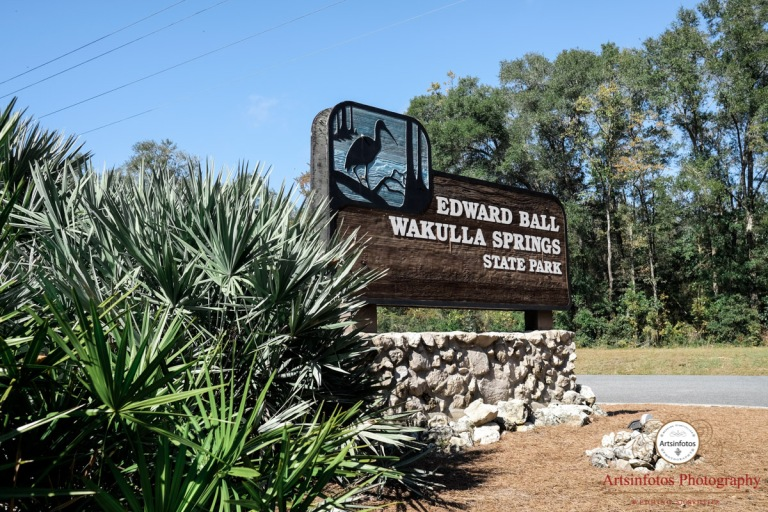 wakulla springs lodge wedding blog 001