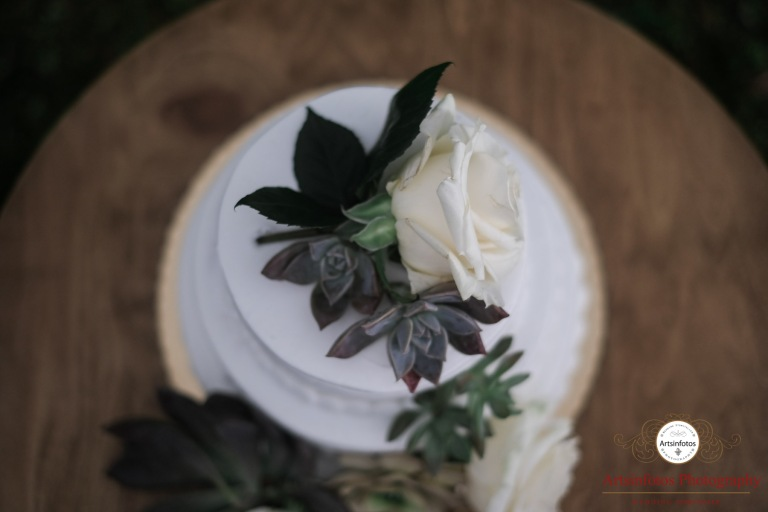 Naples wedding blog 040