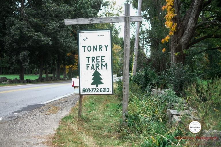 Tonry tree farm wedding blog 026