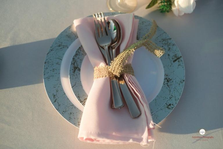 NH wedding 487