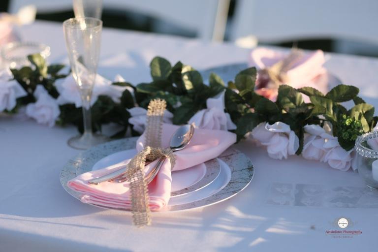 NH wedding 501